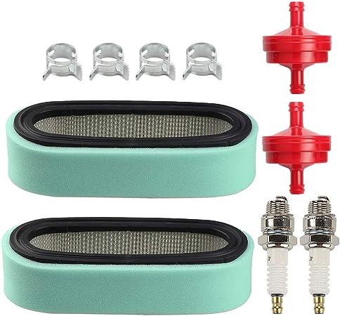 Briggs /& Stratton L-Head Single Cylinder 394358 Fuel Filter /& 796112 Spark Plug
