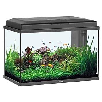 Acuario Aquastart 55 LED negro, 57 litros.: Amazon.es: Productos para mascotas