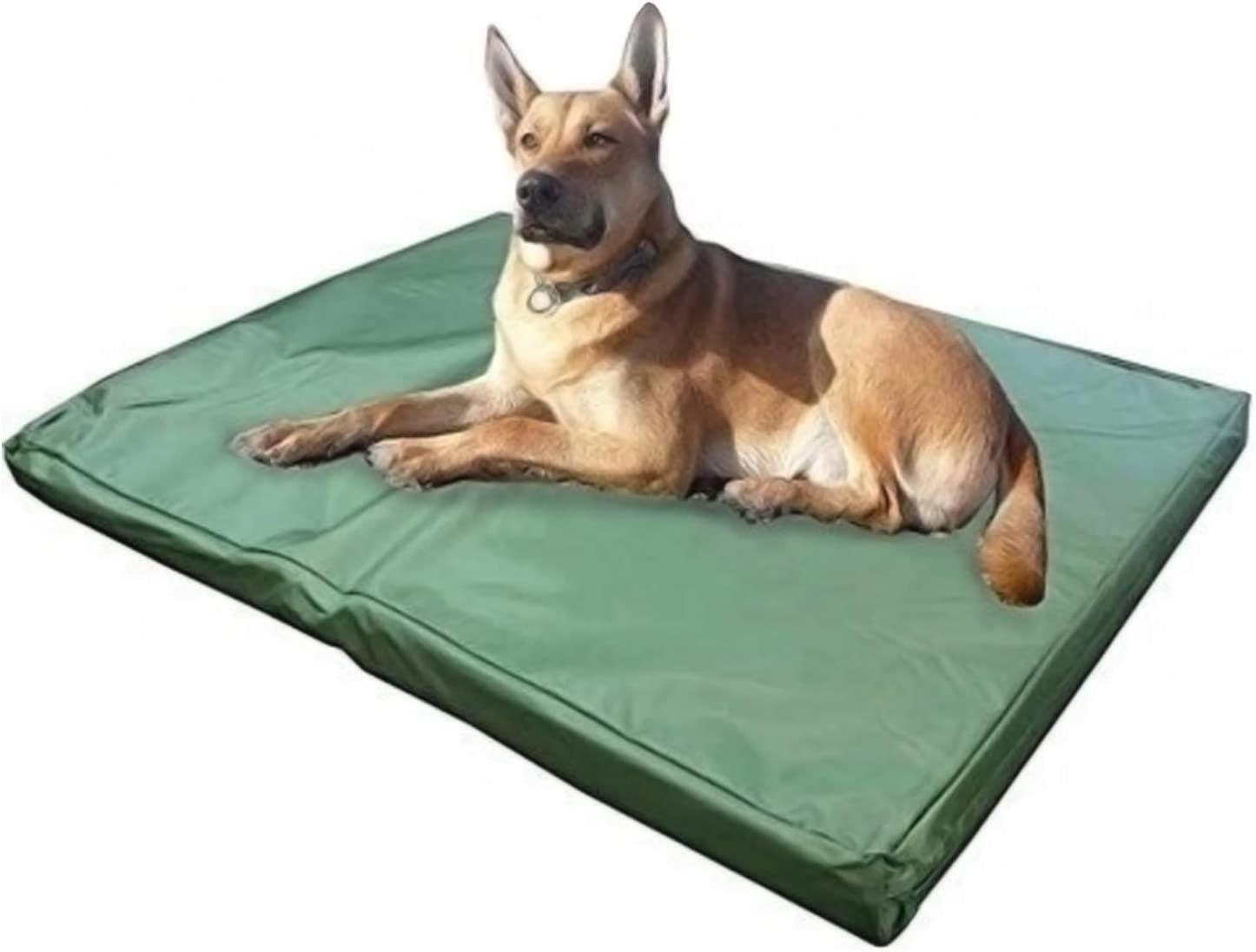 ADOV DOG Bed Medium, Waterproof Pet Bed, Premium Double-Sided and Washable Cover, Orthopaedic Foam Dog Bed Mat, Medium Kennel Pads for Dogs, Cats, Other Small and Large Sized Pets - (84 x 54cm)