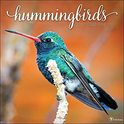 TF Publishing 2017 Wall Calendar, Hummingbirds