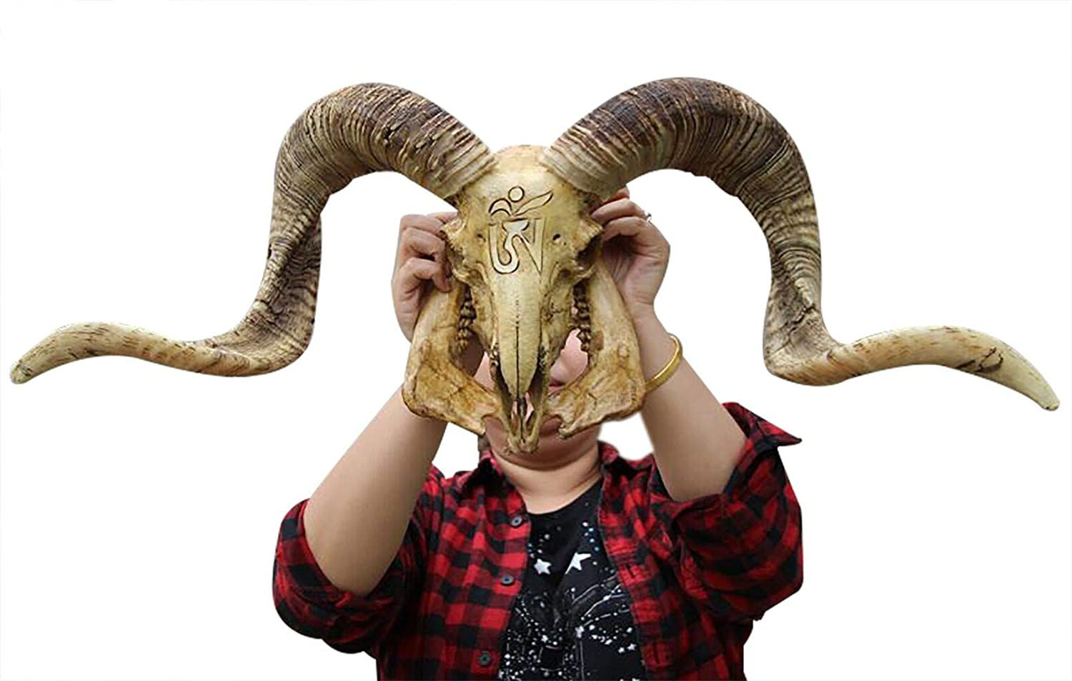 Natural Sheep Skull Head Wall Decor Ram Skull Wall Hanging and Longhorn Steer Authentic Ram Skull with Horns Handmade Carved Ram Head Skull Large Curled Horns - Home Decor, Collectible (Gold)