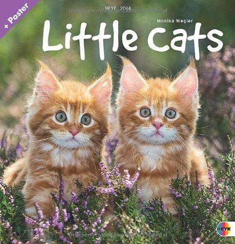 Little Cats Broschurkalender 2014