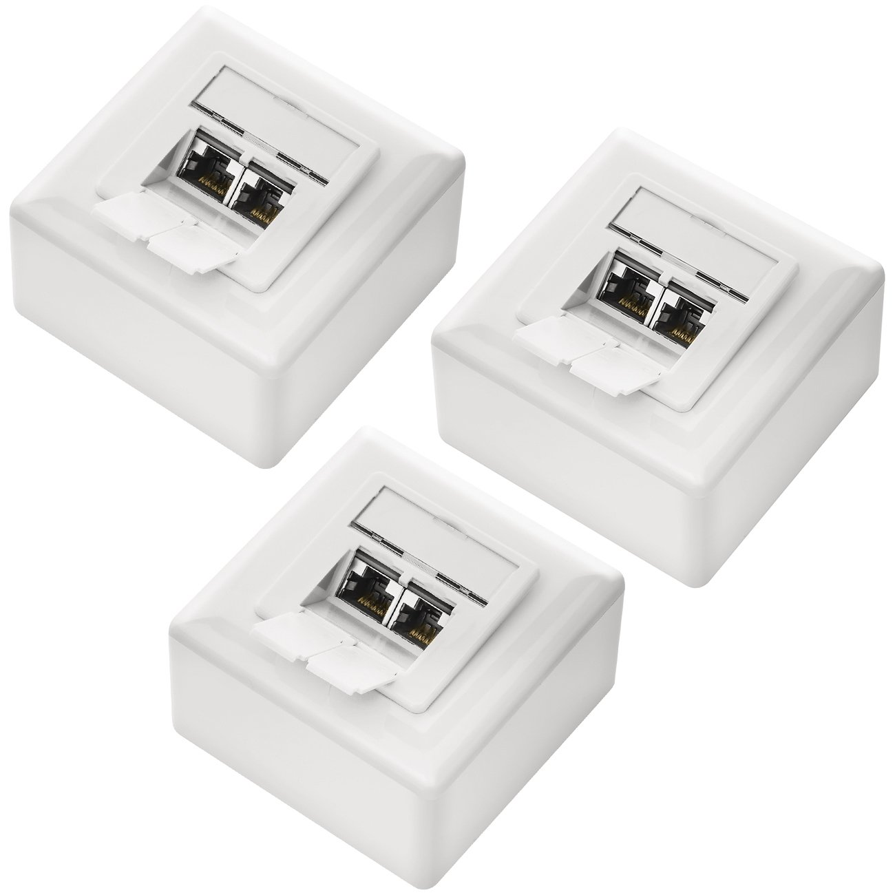 Surface ou Affleurant Blind/é 2X Port RJ45 EIA//TIA 568B 1 Gigabit Ethernet R/éseau deleyCON 10x Cat 6a Universel Prise R/éseau comme Un Ensemble Blanc