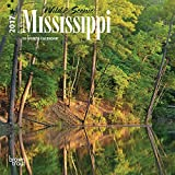 Mississippi Wild & Scenic 2017 US America State 7inch x 7inch Hanging Square Wall Photographic Nature Planner Calendar