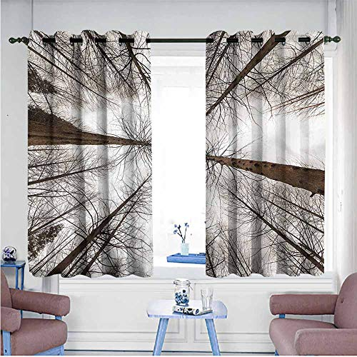 Woodland Wood Panorama Bleach - Mdxizc Simple Curtain Forest Panorama Woodland Silhouette Printing Insulation W72 xL72 Suitable for Bedroom,Living,Room,Study, etc.