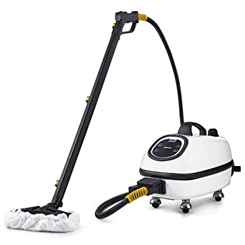 Dupray 72.5 psi Commercial Steam Cleaner