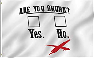 Oersted are You Drunk Funny Beer Drinking Flag 3x5