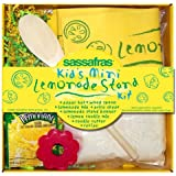 Mini Lemonade Stand Kit