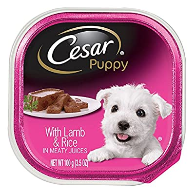 CESAR Puppy Wet Dog Food