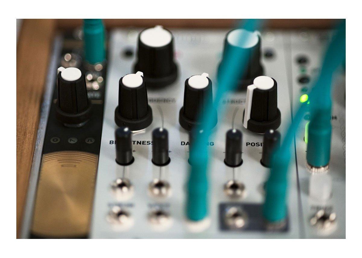 Mutable Instruments Rings Resonator Eurorack Module by Mutable Instruments (Image #4)