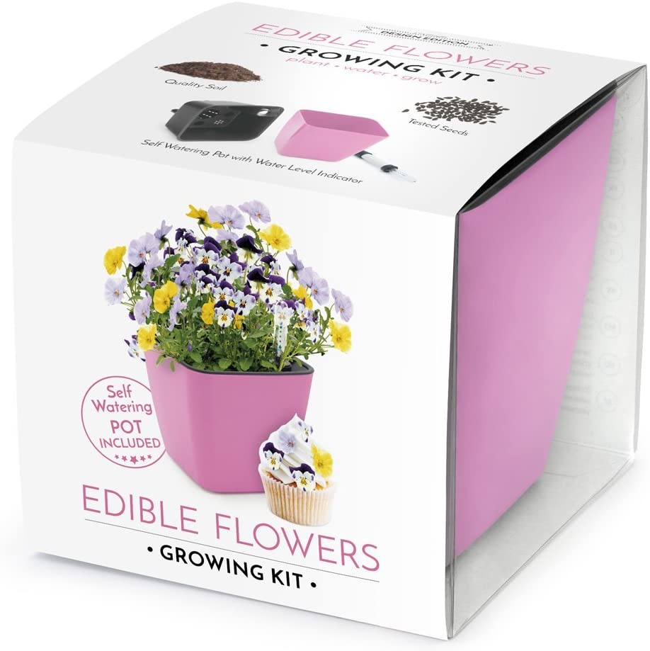 Domestico Kit de Flores comestibles para cultivar, Edible flowers growing kit (Rosa), set All-In-One, set con hidrojardinera 13x13 cm, semillas testadas, sustrato fresco con nutrientes