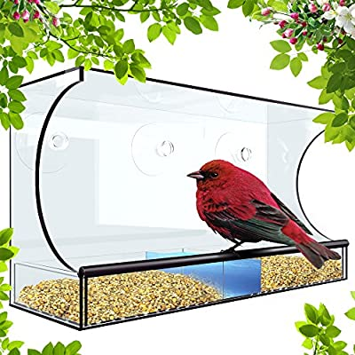 Window Bird Feeder For Outside - XL 5 Inch Opening For Cardinal, Blue Jay and Bird Variety - Squirrel Proof When Placed High - With 3 Bonus Heavy Duty Hook Suction Cups