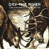 "The Chambers & The Valves [7"" VINYL]"