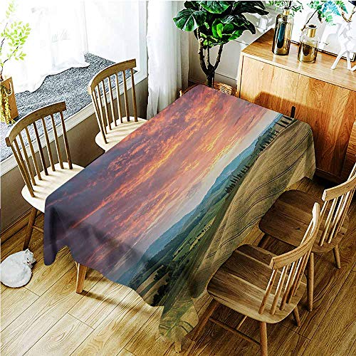 Cypress Garden Bridge - Tablecloth for Kids/Childrens,Tuscany Tuscany Italy Cypress Trees and Fields Crop Cloudy Sky Holiday Destination,Dinner Picnic Table Cloth Home Decoration,W52x70L,Vermilion Khaki
