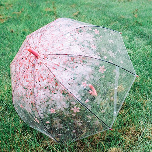 Cherry umbrella, romantic and compact transparent umbrella and rainproof cherry blossom pattern, semi-automatic (pink) by RiseSunUS (Image #5)