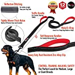 Primal-Pet-Gear-Dog-Leash-8ft-Long-Black-Traffic-Padded-Two-Handle-Heavy-Duty-Double-Handles-Lead-for-Control-Safety-Training-Leashes-for-Large-Dogs-or-Medium-Dogs-Dual-Handles-Leads