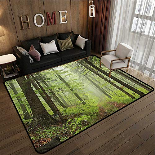 Bath Rugs,Outdoor,Trail Trough Foggy Alders Beeches Oaks Coniferous Grove Hiking Theme,Light Green Light Yellow 63