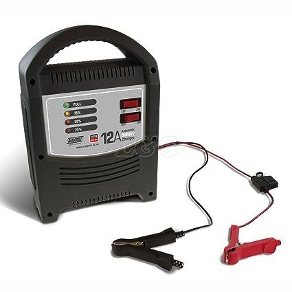 Maypole MP7112 - Cargador de batería (12 A, LED automático ...