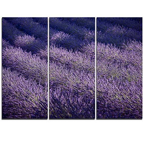 "Design Art MT11367-3P Lavender Field & Ray of Light Oversized Landscape Metal Wall Art (3 Piece),Blue,36x28"""