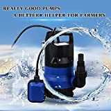 Anfan 1/2HP Energy Saving Clean/Dirty Water Submersible Pump Heavy Duty Water Pump for Garden House US Plug
