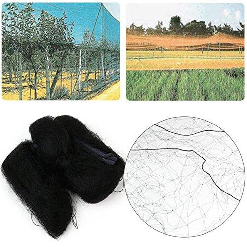 701: 8 m Shoppy Star Malla Verde para Proteger los Cultivos del /árbol Plantas jard/ín Malla de Nailon antip/ájaros 3 tama/ños a Elegir Frutas