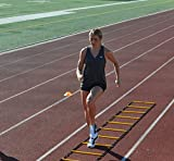 Sport Speed (Two) NO CHEAT - Agility Ladders