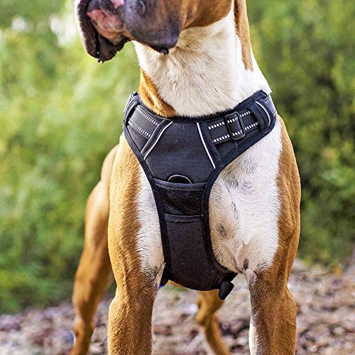 RABBITGOO Adjustable Dog Harness No Pull 3M Reflective Vest with Handle High Visibility Reinforced Straps Easy Control Harness for Large ()