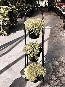 Herb Garden Plant Stand Garden Outdoor