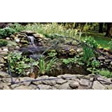 Atlantic Water Gardens Large Pond and Garden Protector with 20x20 - Foot Dome Net and 9x12 - Foot Frame