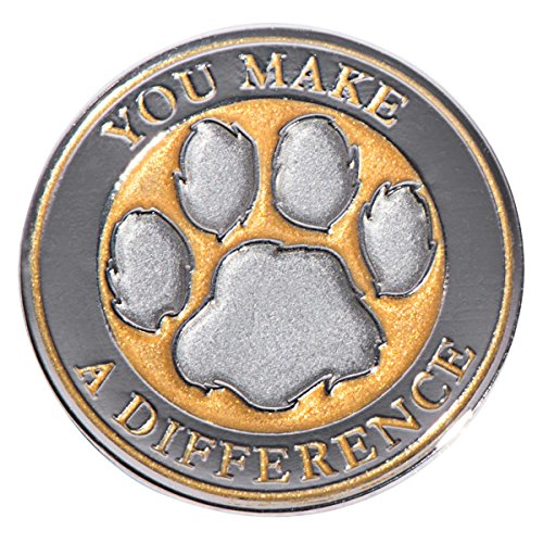 TCDesignerProducts You Make a Difference Gold Appreciation Award Lapel Pins, 12 Pins (Difference Lapel Pin)