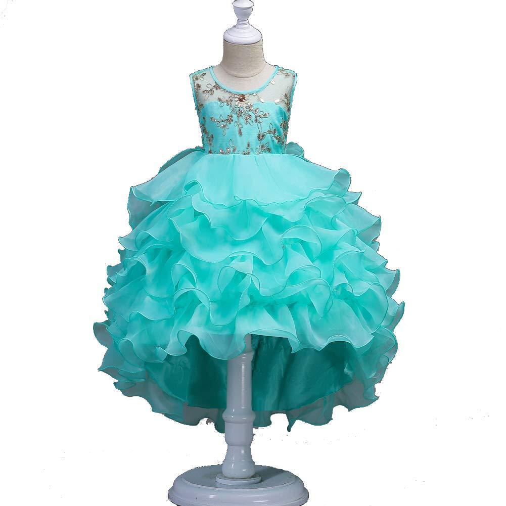 GIFT ZHIZHUXIA Prinzessin Puffy Dresses Girls Dress Dress Dress Embroidered Kids Hochzeit Brautjungfer Geburtstag Abend Party Weihnachtsfeier Kleid Requisiten (Farbe : Green) d27d50