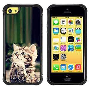 """Pulsar iFace Series Tpu silicona Carcasa Funda Case para Apple iPhone 5C , Gatito lindo Orar Dios cristiano dulce"""""""