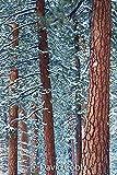 Sierra Club Engagement Calendar 2021