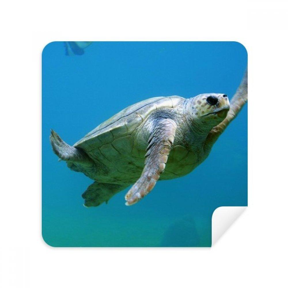 Marine Organism Turtle Ocean Animalメガネクリーニングクロス電話画面クリーナースエードファブリック2pcs   B07C95D795