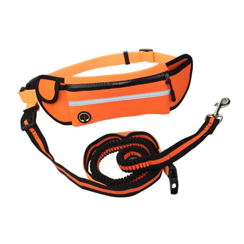 CHEEKXMR Hands Free Dog Leash for Running Walking Training Hiking, Reflective Bungee, Poop Bag Dispenser Pouch, Adjustable Waist Belt, Shock Absorbing, Ideal for Medium Dogs,Green (Orange)