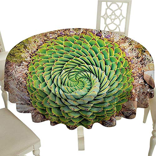 party round tablecloth 54 Inch Plant,National Flower of Lesotho South of Africa Aloe Polyphylla Spinning Spiral Aloe Vera,Multicolor Suitable for traveling,outdoors,family,restaurant,coffee shop More
