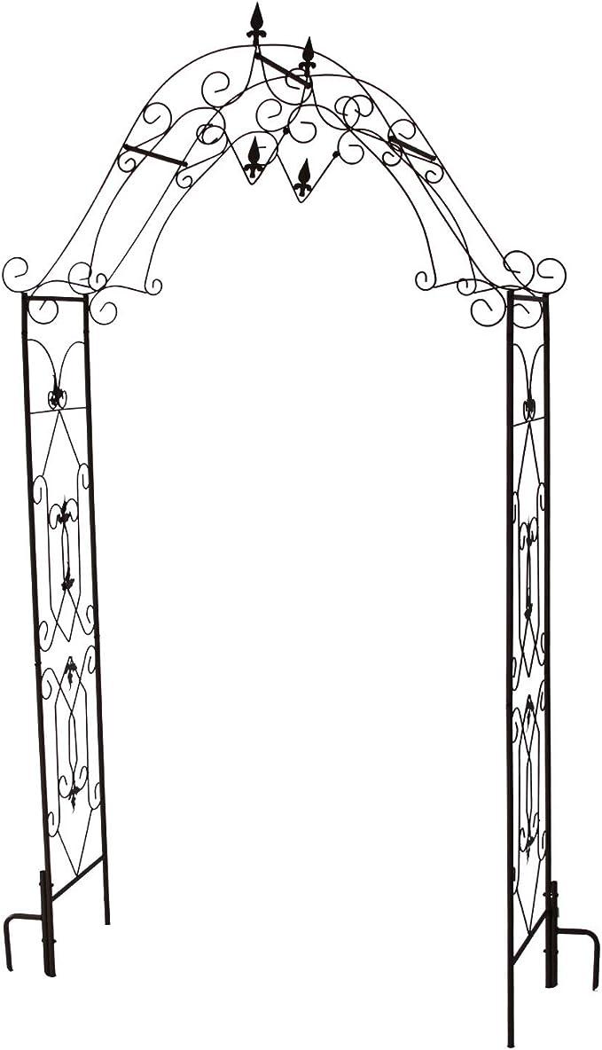 1PLUS robusto Rose arco de acero, Puerta para jardín de metal Kordes, inoxidable rosto ptik o negro, Negro: Amazon.es: Jardín