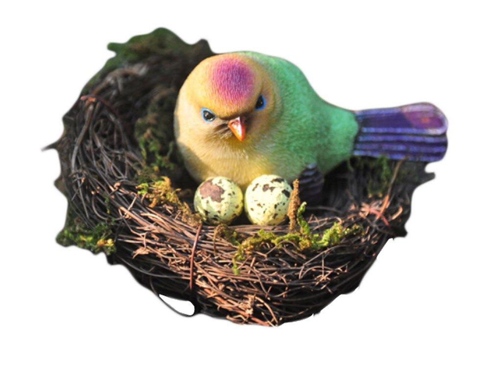 玄関先迄納品 クリエイティブリビングルームテレビキャビネット装飾樹脂Figurines、1 Bird Nest in the in the Nest B01ARCGAQS, 近藤農園:b42e6807 --- arcego.dominiotemporario.com