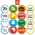 Corrure 50 Pack Baby Monthly Stickers And Pregnancy Set 17 Belly Bump Week By Week 12 Months 12 Milestones And 9 Holidays For Boys And Girls Save All The Happy Moments Or Use As Baby Shower Gift