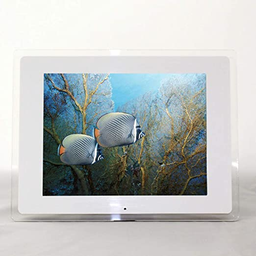 WANGTX 15 Pulgadas LED HD Pantalla LCD Marco de Fotos Digital ...