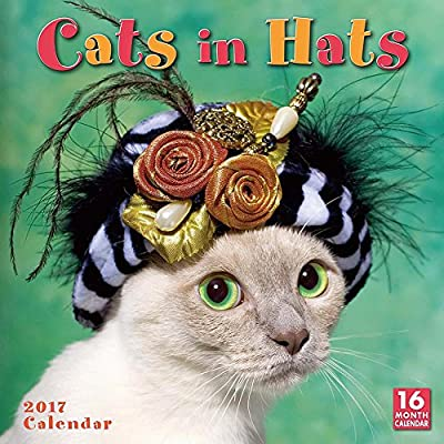 Cats In Hats 2017 Wall Calendar