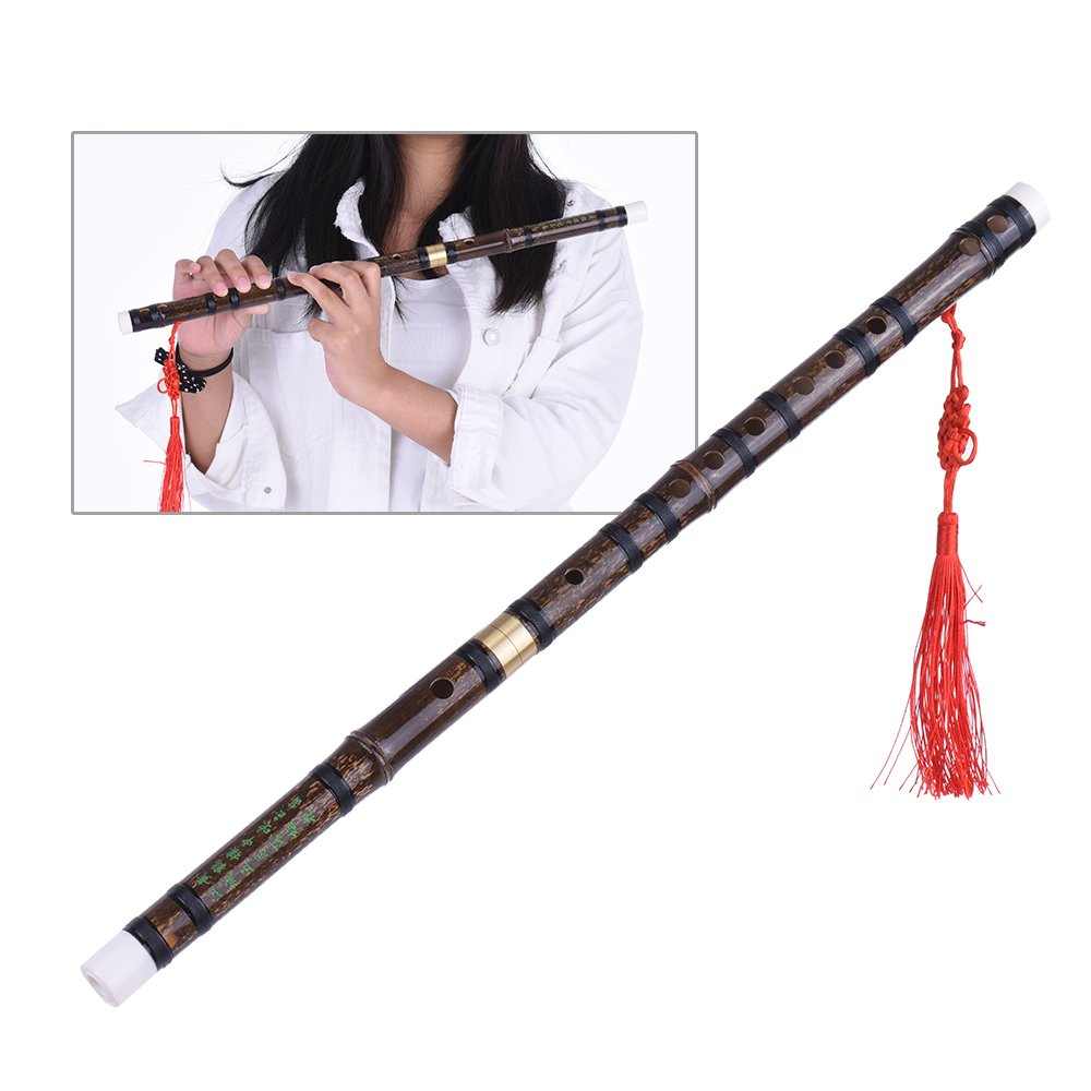 ammoon Bamboo Flute / Dizi Pluggable Handmade Traditional Chinese Musical Woodwind Instrument in F Key for Beginner Study Level