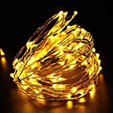 LED Battery String Lights with Remote Control,100 LED 33ft Waterproof Outdoor Lights, for Home Decor Indoor Copper Wire Warm Lights