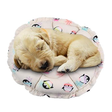Alfombrilla para saco de dormir para mascotas, perro, gato, cachorro, Y56,