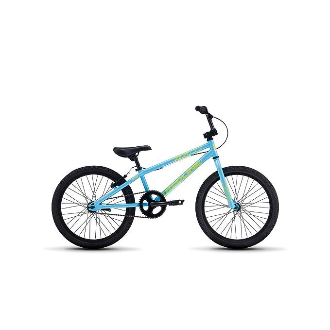 Redline Bikes Raid 20 Youth BMX, Coaster Brake, Blue best bmx bikes