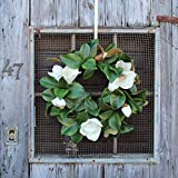 Darby Creek Trading Classic Real Touch White Magnolia Leaves Everyday Decor Spring Wreath 24''