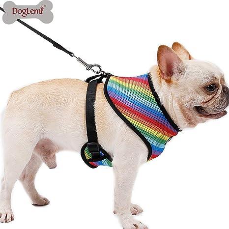 XDYFF Arnés de Perro pequeño Arnés para Mascotas de Malla de Arco ...