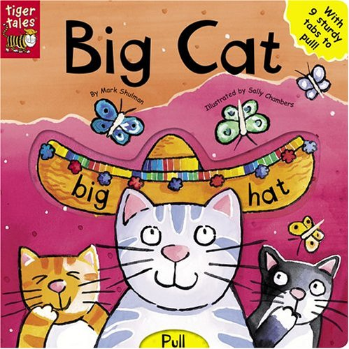 Big Cat (All Change Board Books)