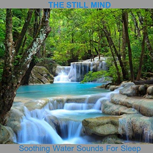 (Trickling Stream Near Flowing River)