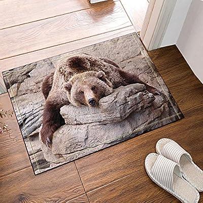 NYMB Animals Decor, Brown Bears lie on Stones Bath Rugs, Non-Slip Doormat Floor Entryways Outdoor Indoor Front Door Mat, Kids Bath Mat, 15.7x23.6in, Bathroom Accessories